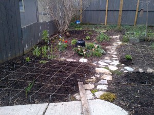 Vegetable and perennial beds