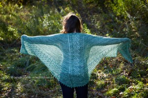 back view of Sargaco Shawl