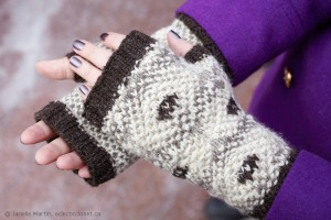 Frost Boils Fingerless Mitts