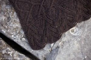 detail of border design on Långhus Blanket